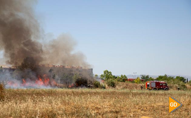 Incendio Pulianas (6)