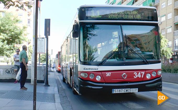nuevas líneas de autobuses granada 05