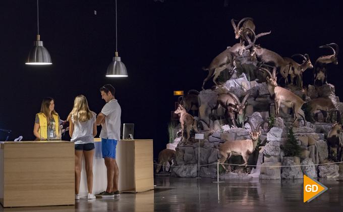 exposiciones parque de las ciencias 24