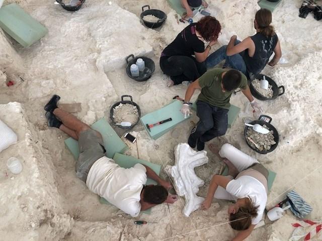 trabajos arqueologicos venta micena