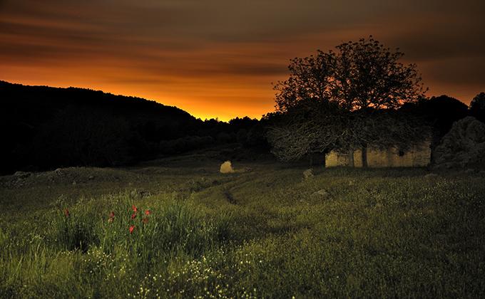 Un parque para soñar_24254280k_Nocturna_resized