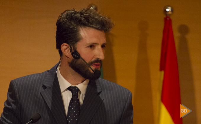 """Entrega de """"Honores y Distinciones"""" de la Diputacion de Granada"""