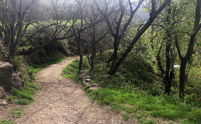 Camino de la Estación 001 Sendero del Tranvía de la Sierra