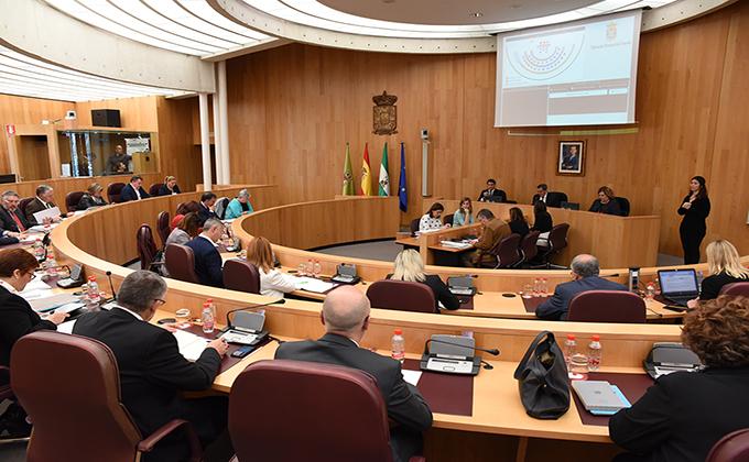 Pleno Diputación de Granada 280319