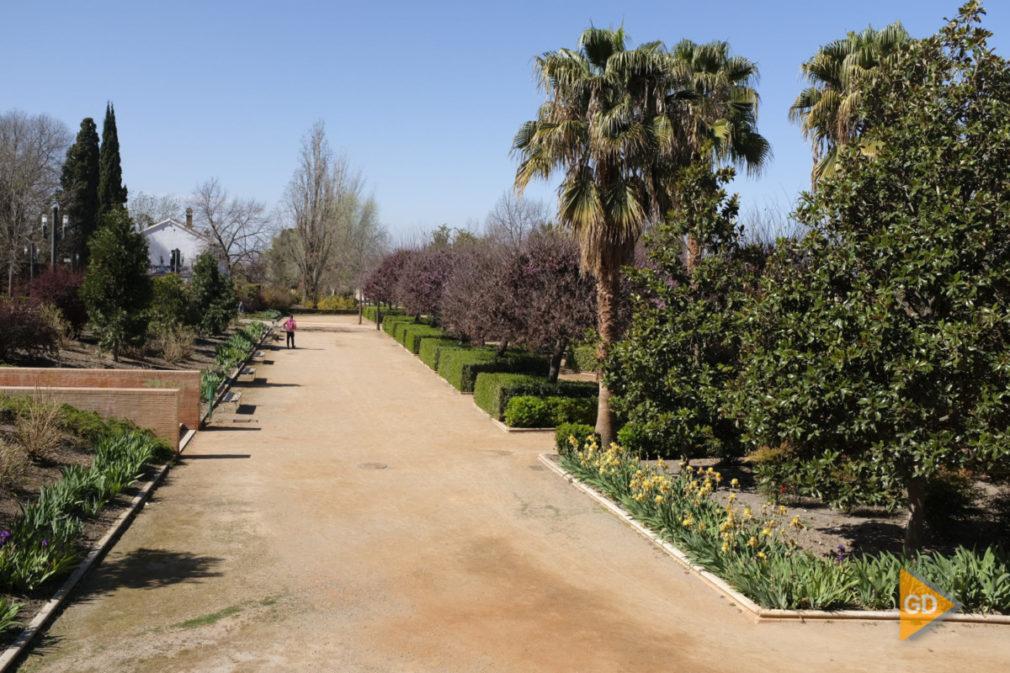 Zona parque Garcia Lorca Foto Antonio L Juarez-4235
