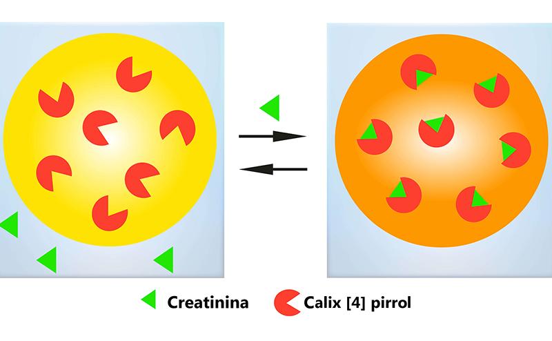ilustracion de la membrana