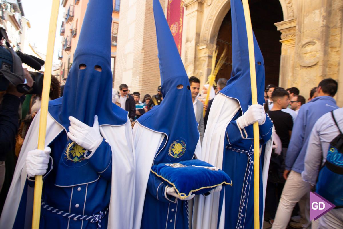 Borriquilla Domingo de Ramos (1)