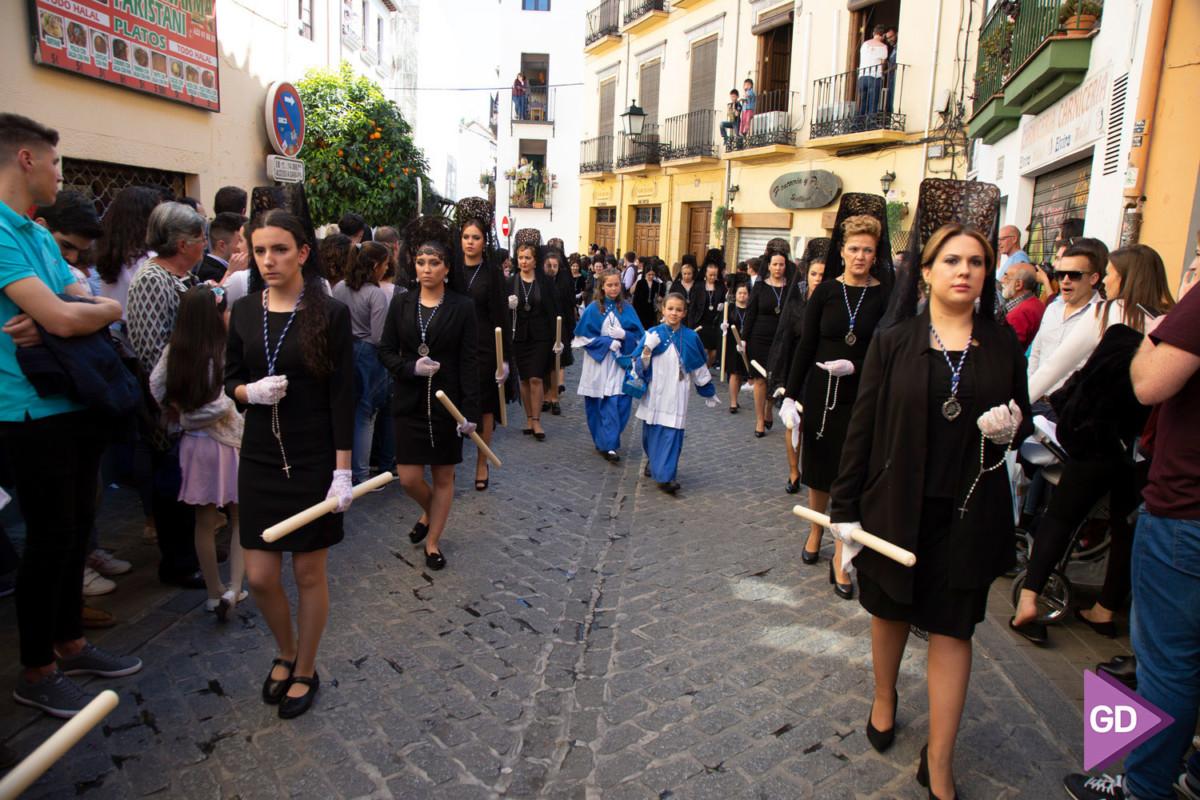 Borriquilla Domingo de Ramos (11)