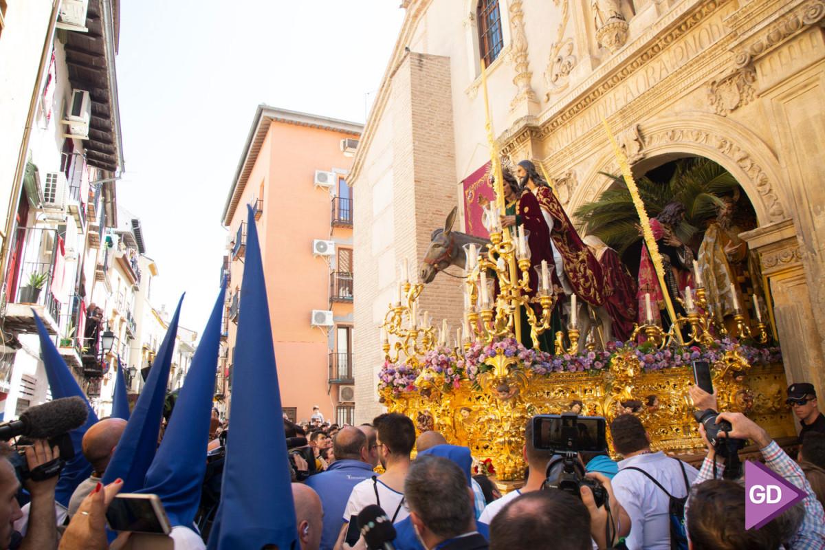 Borriquilla Domingo de Ramos (4)