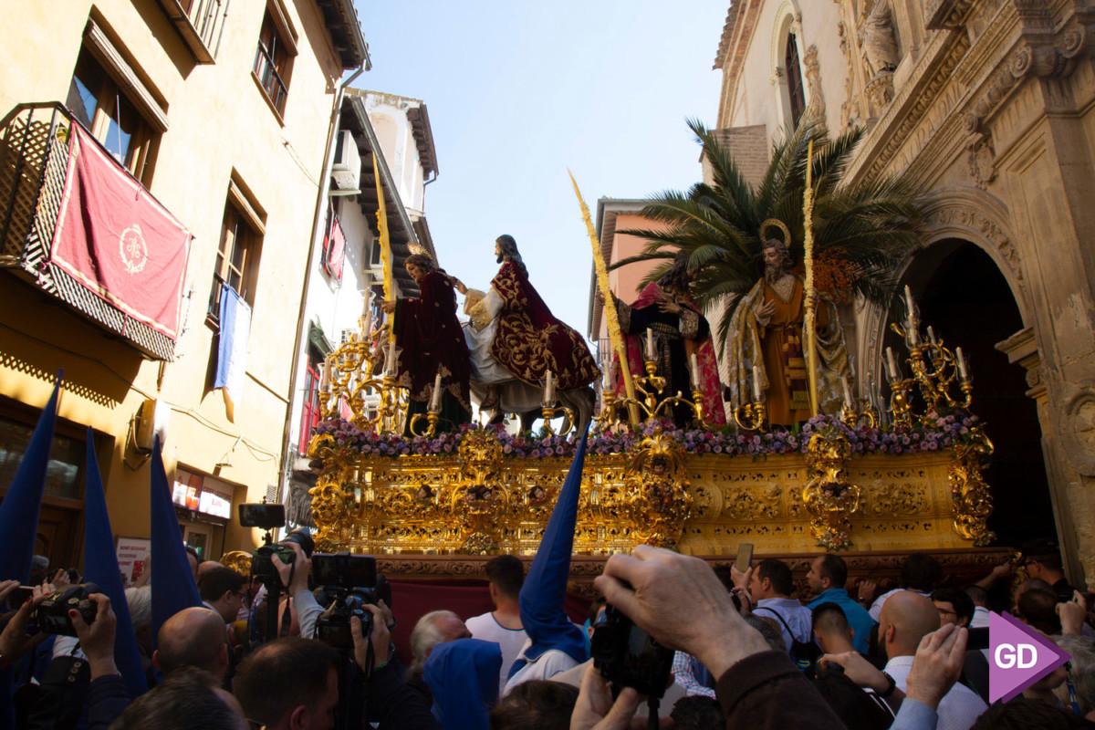 Borriquilla Domingo de Ramos (5)