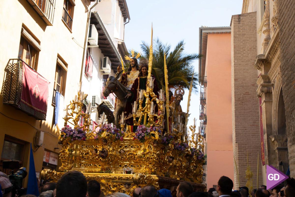 Borriquilla Domingo de Ramos (7)