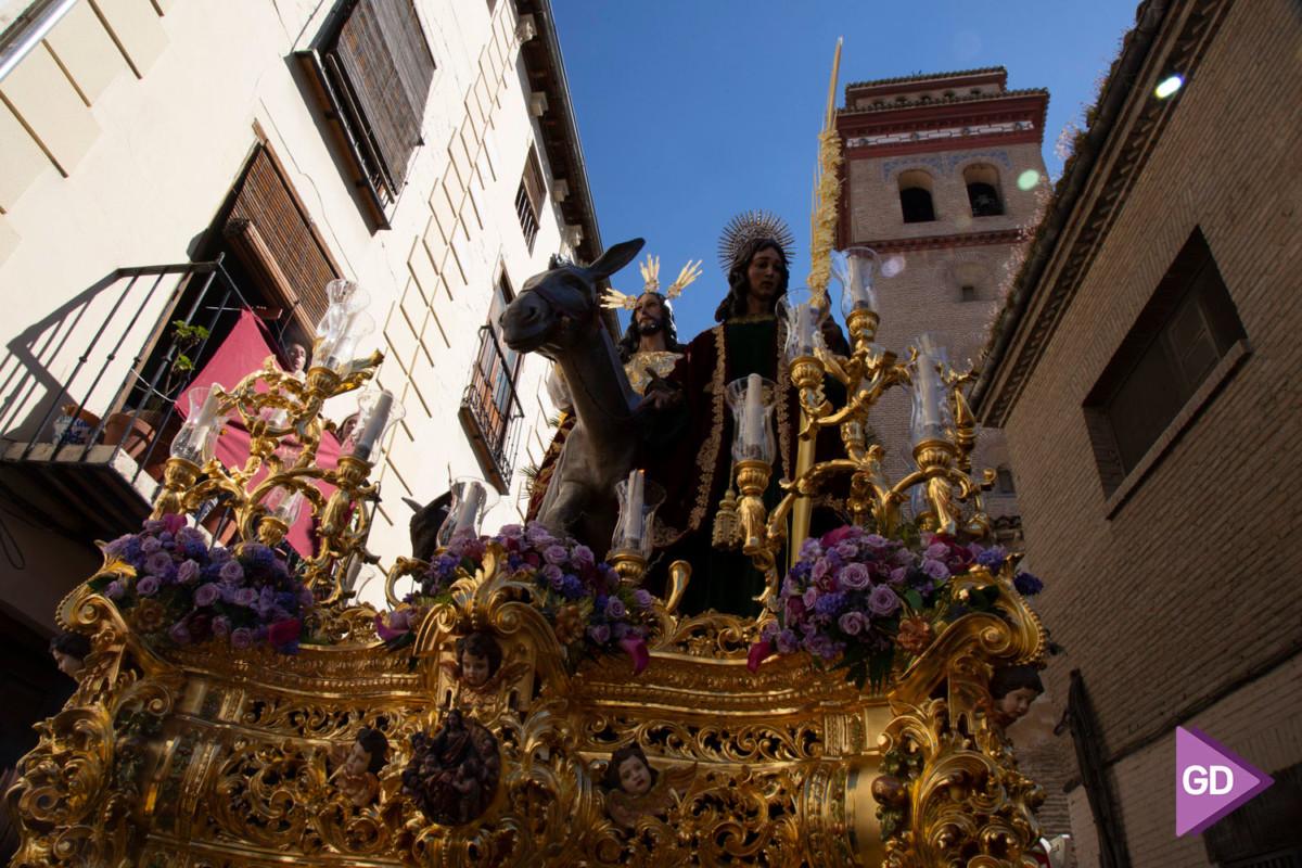 Borriquilla Domingo de Ramos (9)