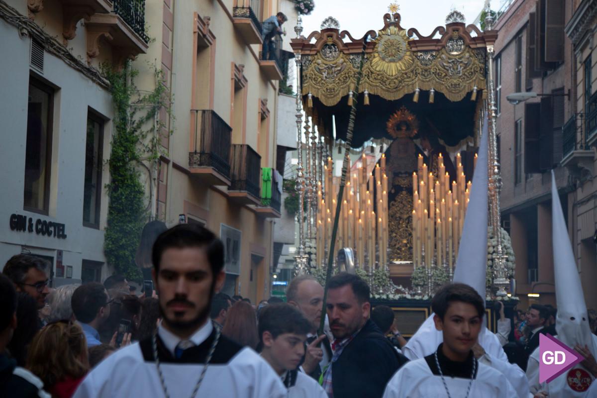 Despojado Domingo de Ramos (10)
