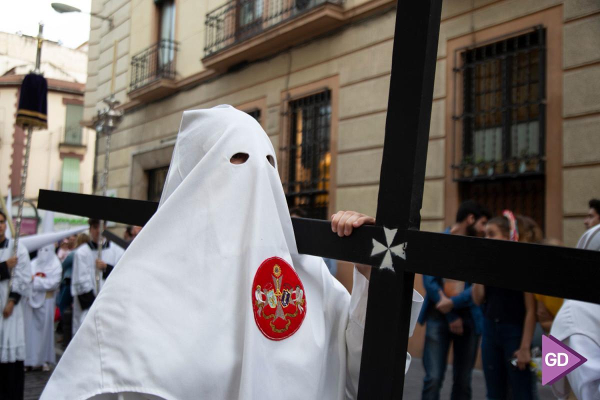 Despojado Domingo de Ramos (7)