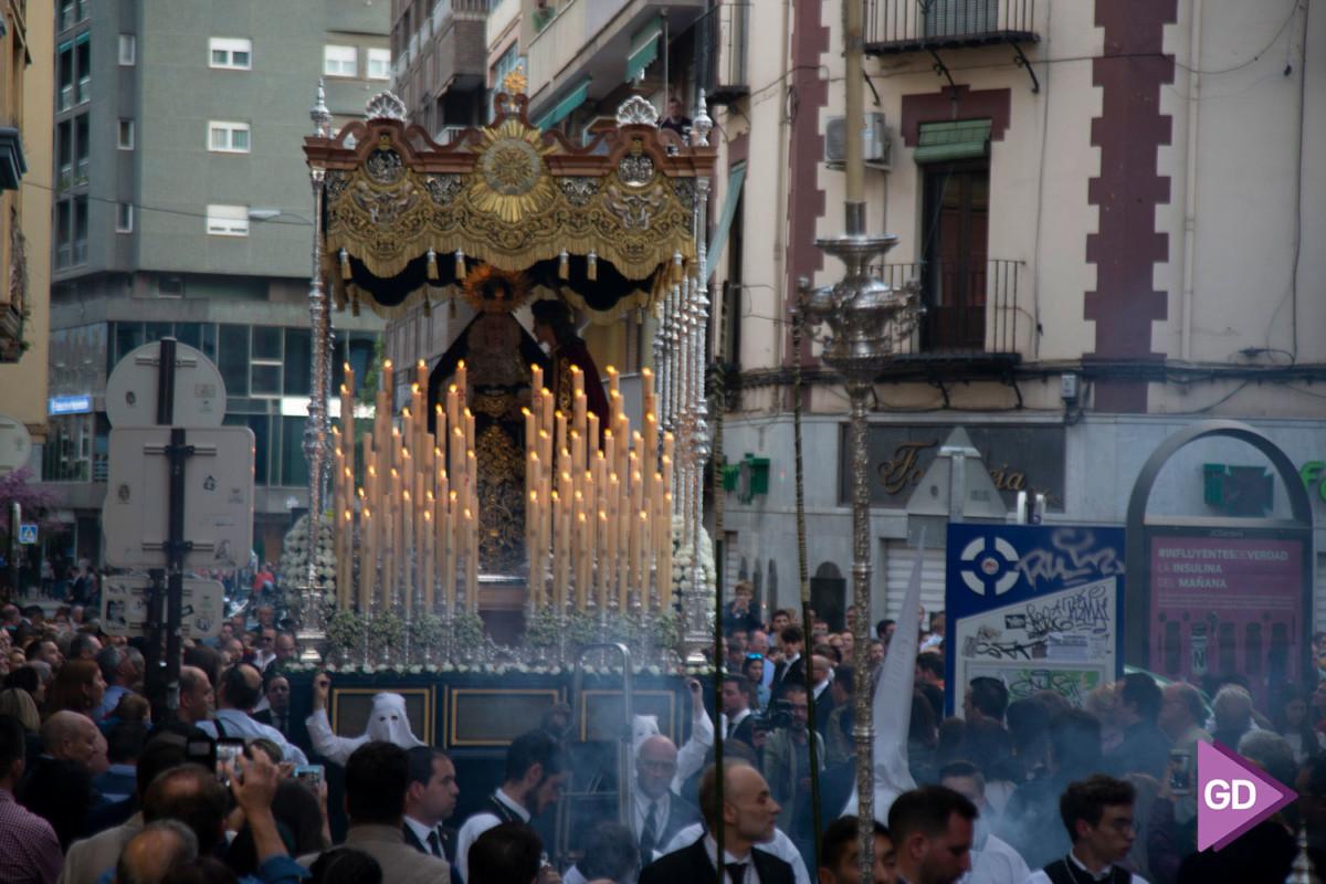 Despojado Domingo de Ramos (8)