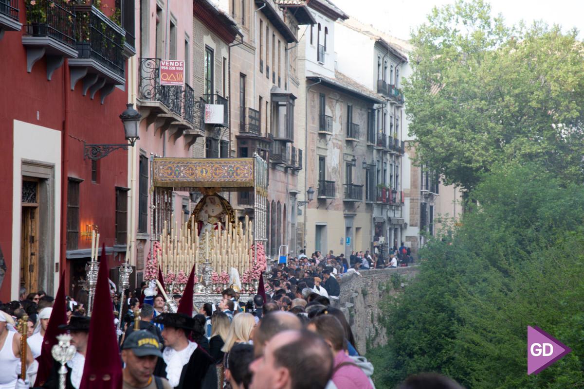 Maravilla Domingo de Ramos (4)