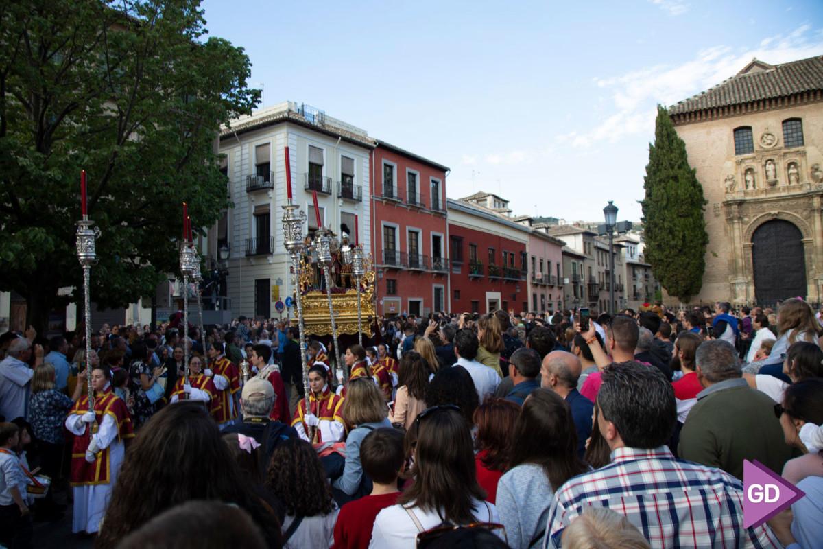 Maravilla Domingo de Ramos (7)