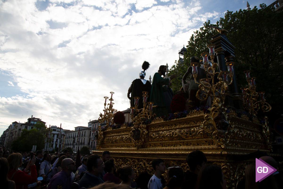 Maravilla Domingo de Ramos (8)