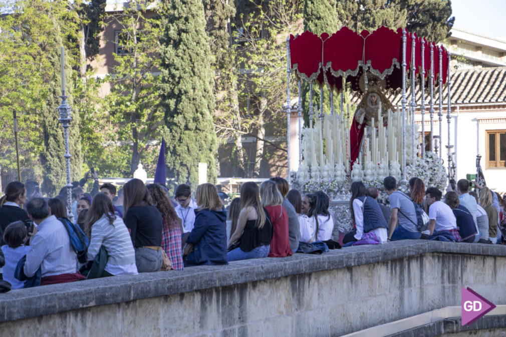 Martes Santo Semana Santa 2019 Foto Antonio L Juarez-2231