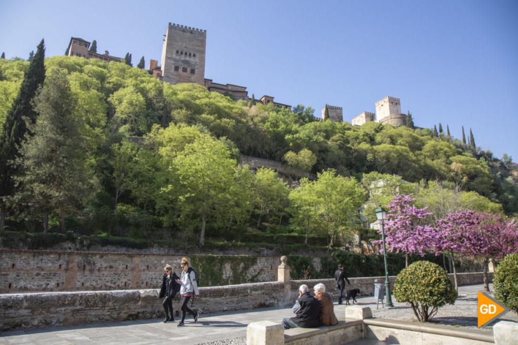 Primavera granada alhambra flores darro paseo tristes plaza nueva turismo buen tiempo-6