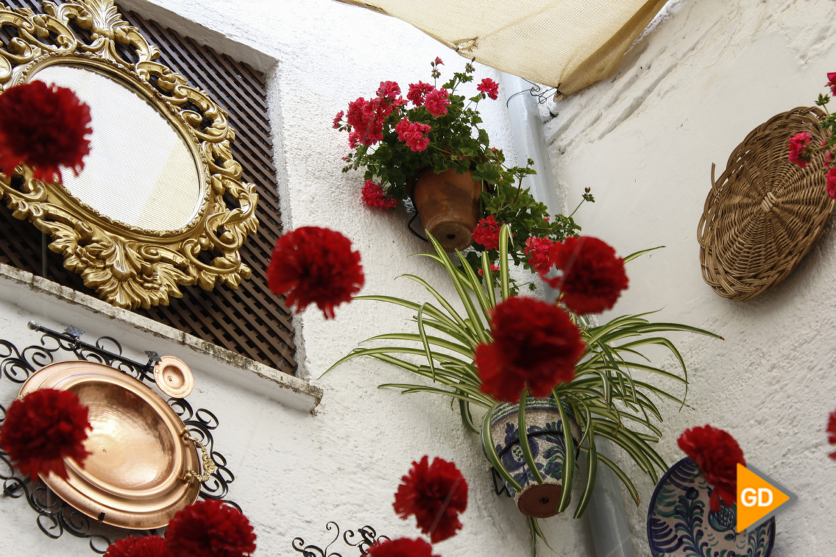 Cruz Convento Carmelitas Calzadas (Sergio)-4