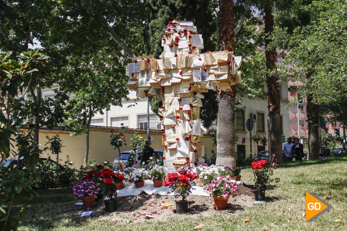 Cruz Hospital Virgen de las Nieves (Sergio)-1