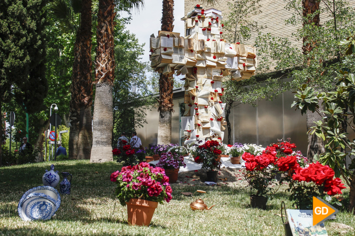 Cruz Hospital Virgen de las Nieves (Sergio)-3