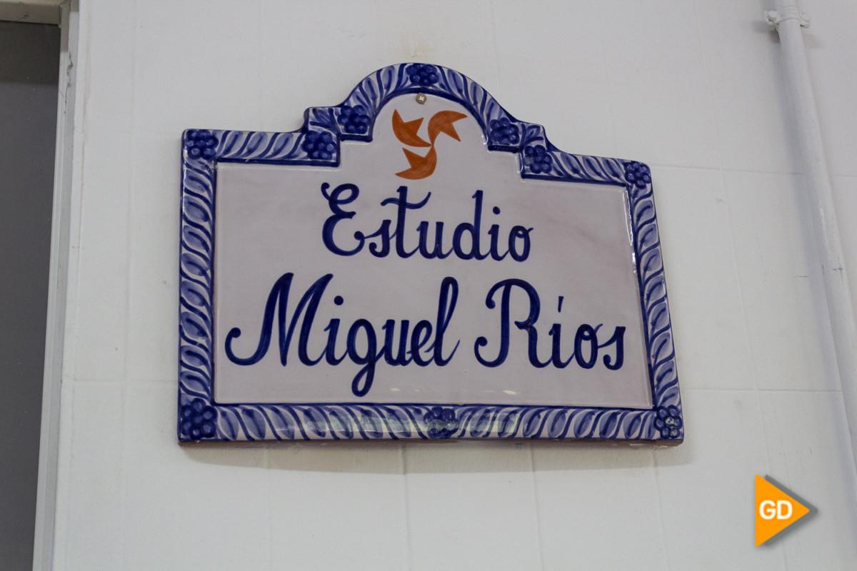 IES Albayzin Miguel Rios (Sergio)-15