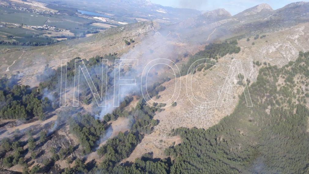 incendio sierra elvira Pinos Puente+