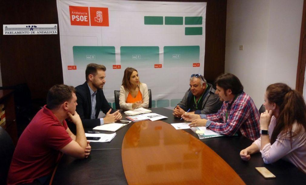 AAF Comarca de Baza Parlamento de Andalucía PSOE 11 Junio