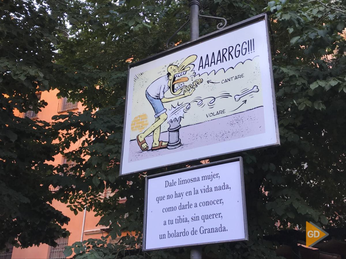 Carocas Corpus 2019 Granada Foto Antonio L Juárez-11