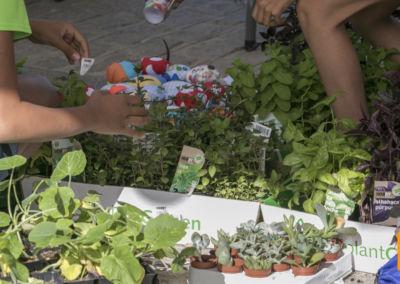 Feria Emprendimiento (fotos Sergio Garrido)-15