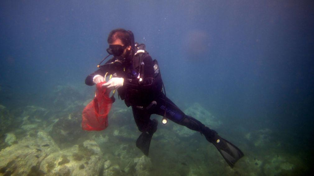 buzo Posidonia oceánica