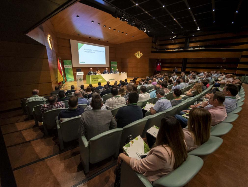 Vista Asamblea General
