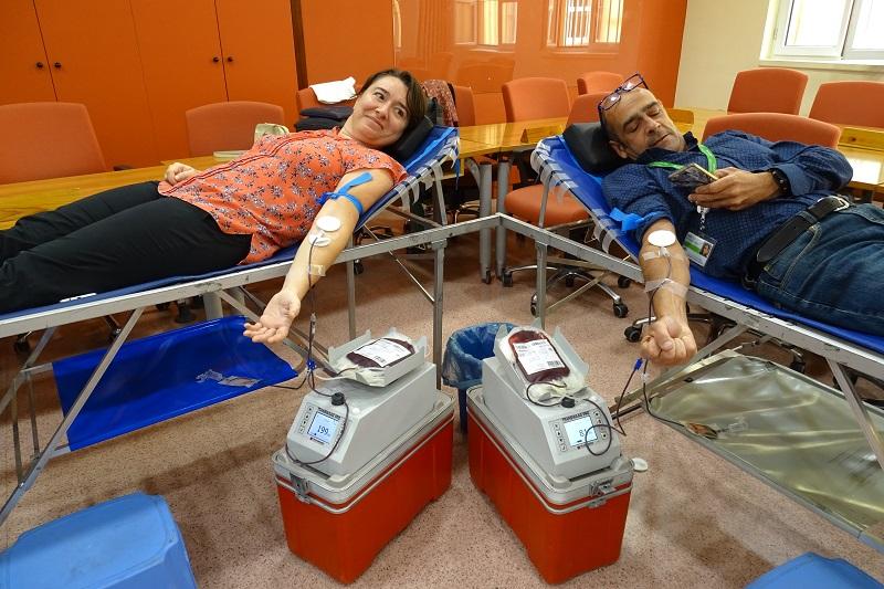 donación de sangre Escuela Pública de Salud