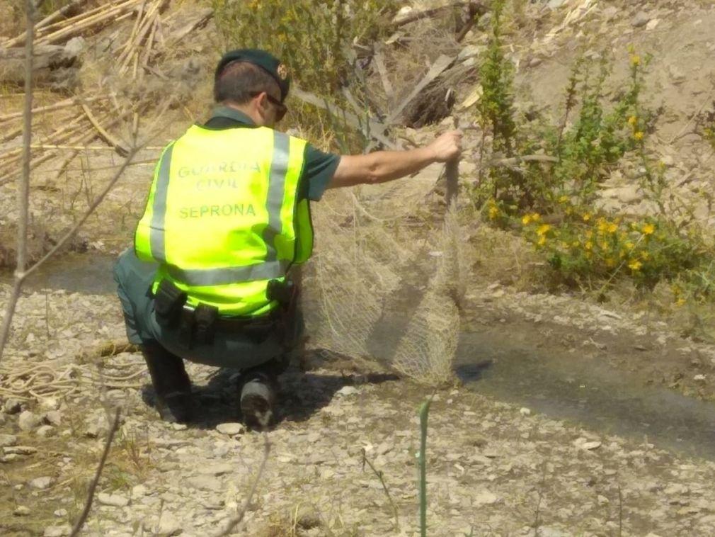 Interceptan a tres hombres capturando jilgueros en Almuñécar