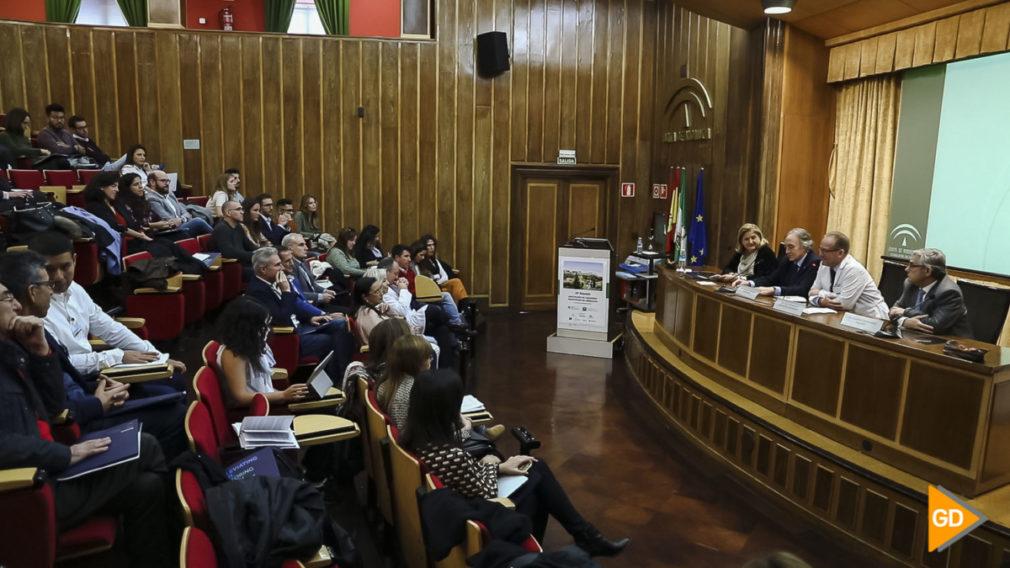 El Hospital Virgen de las Nieves reúne a cirujanos pediátricos_Sara Castaño