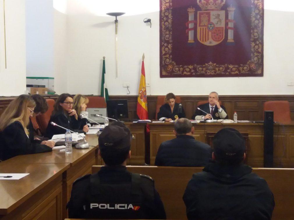 """Granada.- Tribunales.- Acusado de matar a su mujer en Guadahortuna dice que disparó al creer ver """"hormigas muy grandes"""""""