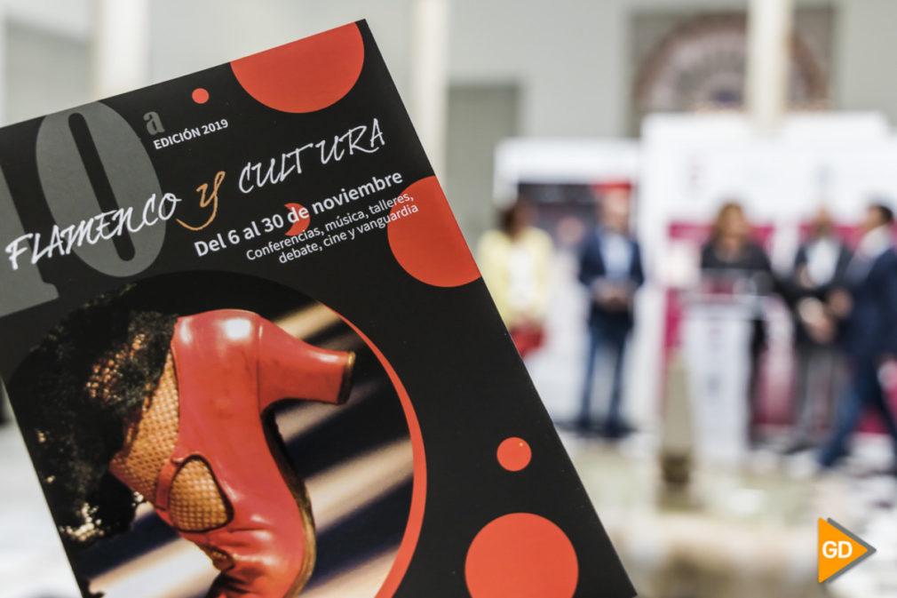 Flamenco y Cultura_Sara Castaño-3