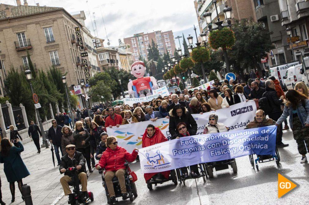 Marcha de la Discapacidad - Dani B