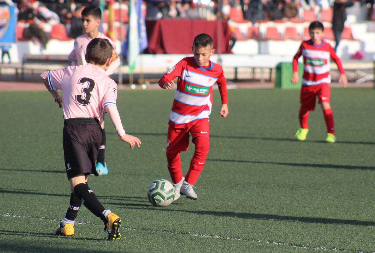 Torneo Benjamín Ciudad de Pinos Puente 06
