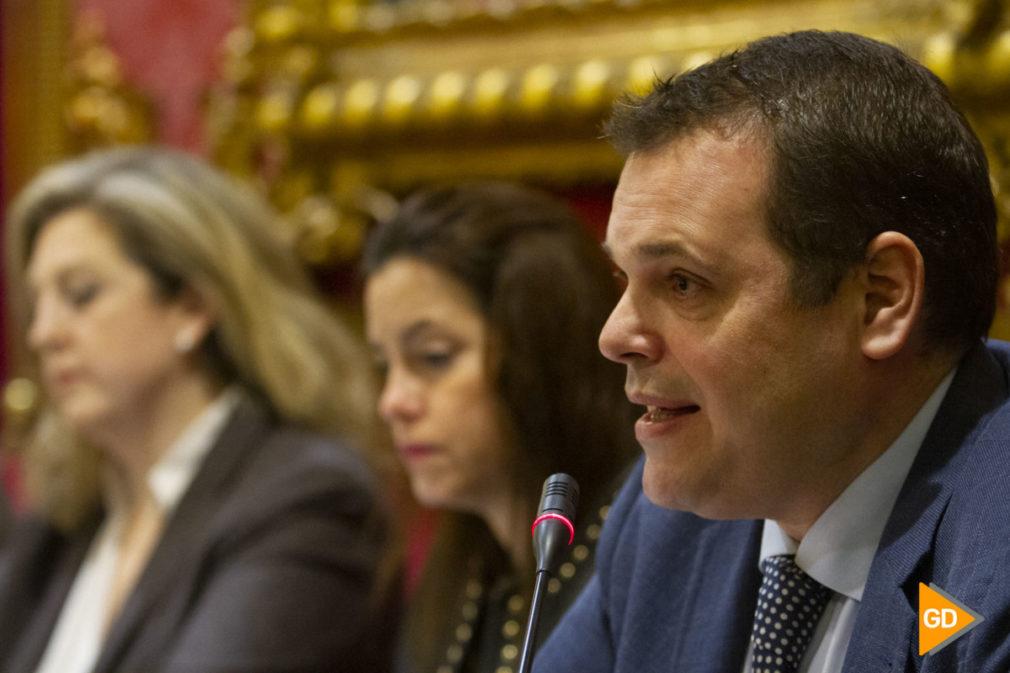pleno del Ayuntamiento de Granada de mes de enero