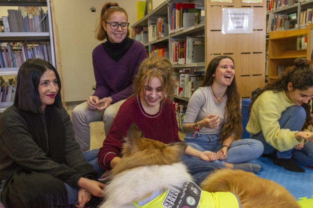 terapia perros universidad granada