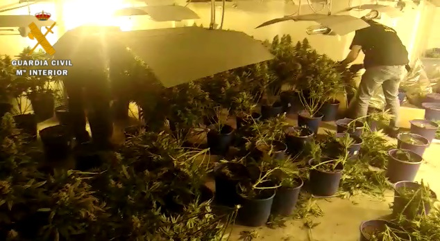 Granada.- Sucesos.- Tres personas investigadas por cultivo de droga en una operación antidroga en Jun