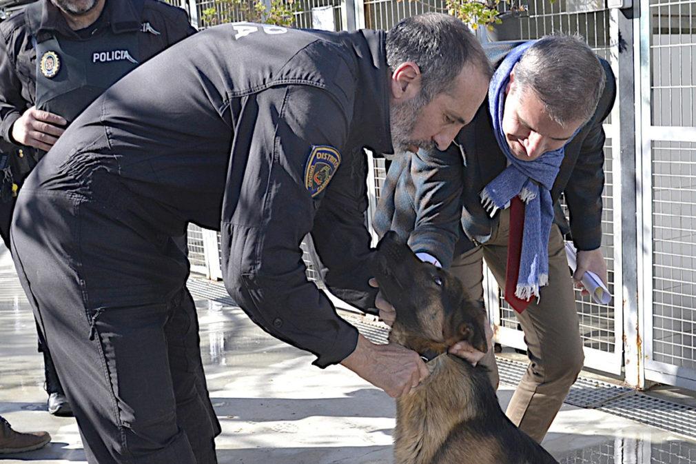 Granada2031.- Ayuntamiento asegura tener las mejores instalaciones de unidad canina de España, solo superada por Madrid