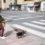 Multas de hasta 30.000 euros para los dueños de perros que incumplan el estado de alarma