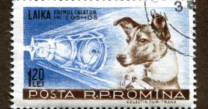 La perrita Laika en un sello de Correos de Rumanía