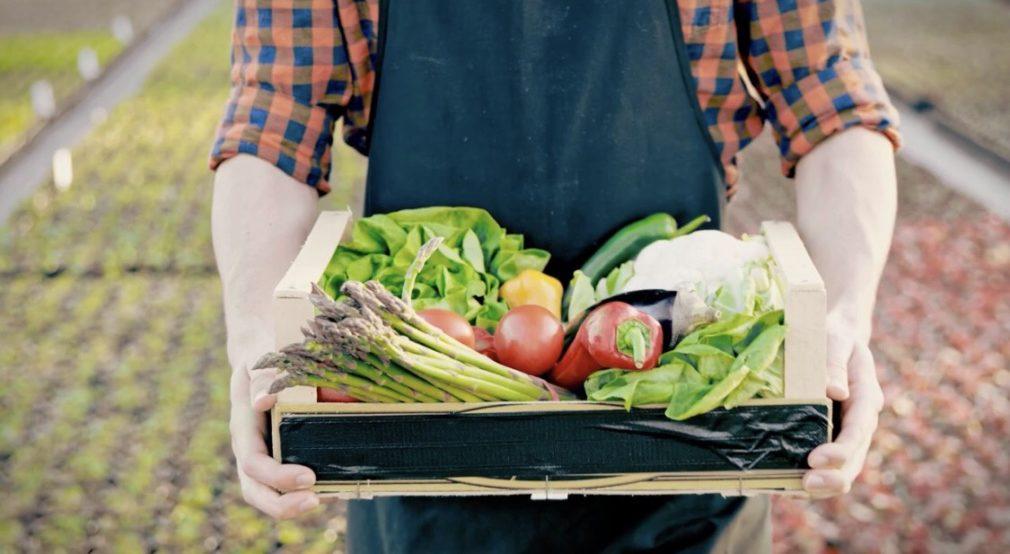 Frutas y verduras de Granada -Diputacion