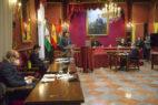 pleno Ayuntamiento Granada - Foto Algarra