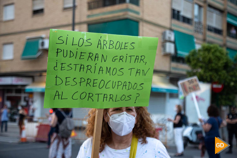 FOTOS TALA DE ARBOLES (14)